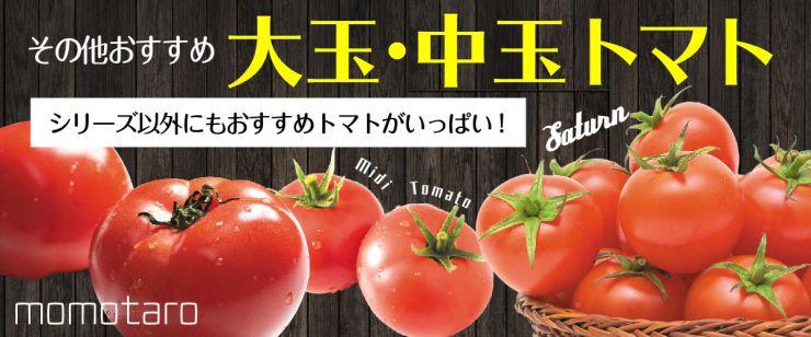 おすすめ大玉・中玉トマト